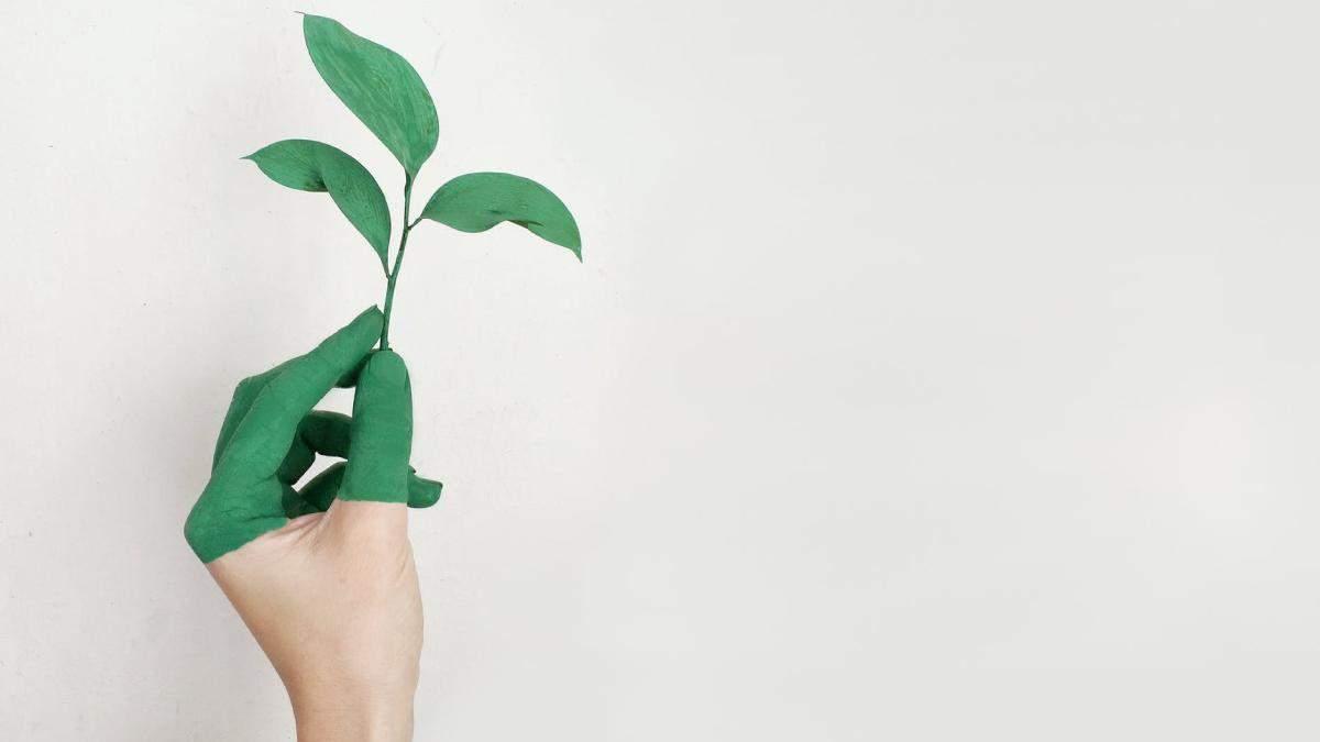Косметика вредит окружающей среде: экологические альтернативы