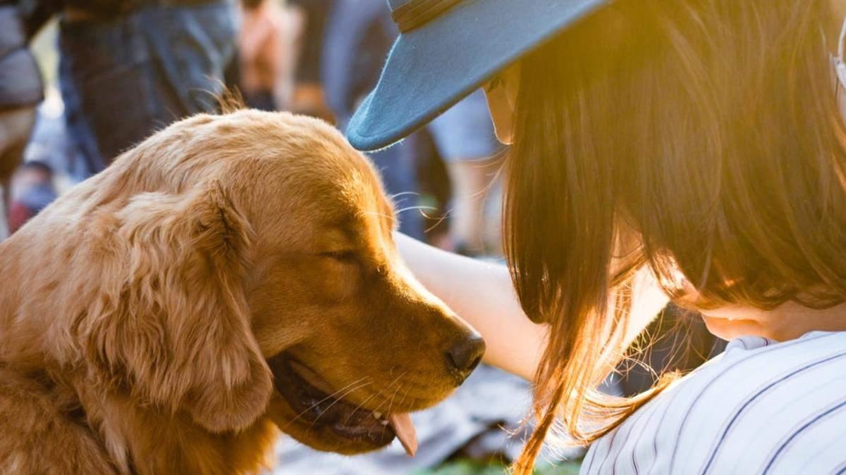 Як знати, чи тестували косметику на тваринах: інструкція